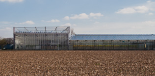 CROPDESIGN nv<br><br>uitbreiding serrecomplex greenhouse 2